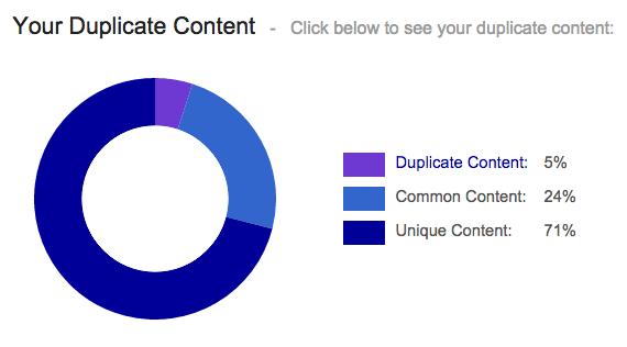 duplicate content finden